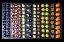 Различные шоколадные конфеты с красочной глазурью, вид сверху — стоковое фото