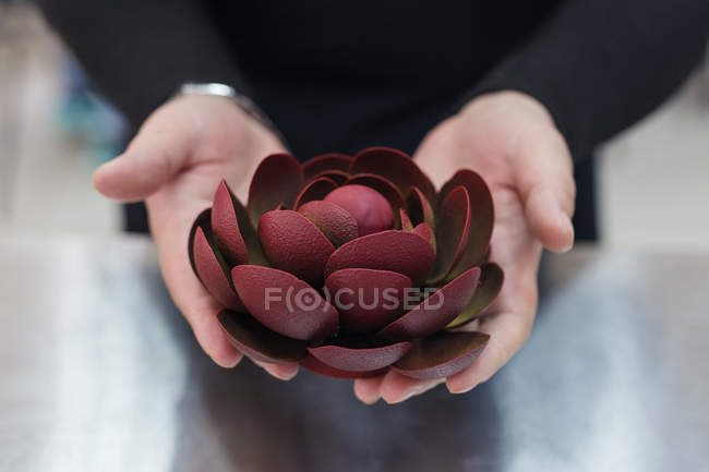 Close-up of female hands holding chocolate flower decoration — Stock Photo