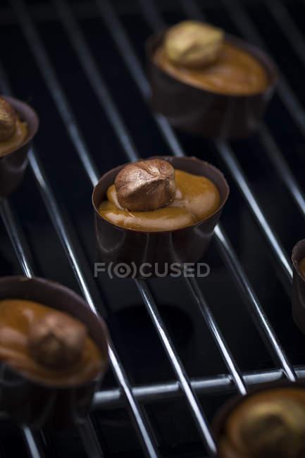 Bombons de chocolate com recheio de chocolate e nozes na grade — Fotografia de Stock