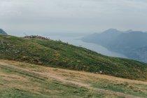 Спокійний ландшафт зеленого пагорба над річкою туманні — стокове фото