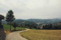 Идиллический вид на пышные сельских дорог в сельской местности — стоковое фото