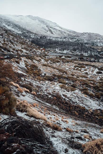 Vale gramado coberto de neve, cordilheira no fundo — Fotografia de Stock
