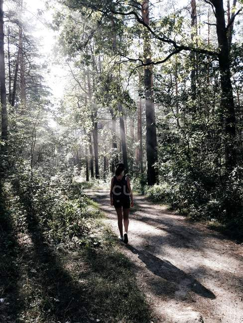 Rear view of girl walking at forest footpath at sunny day — Stock Photo