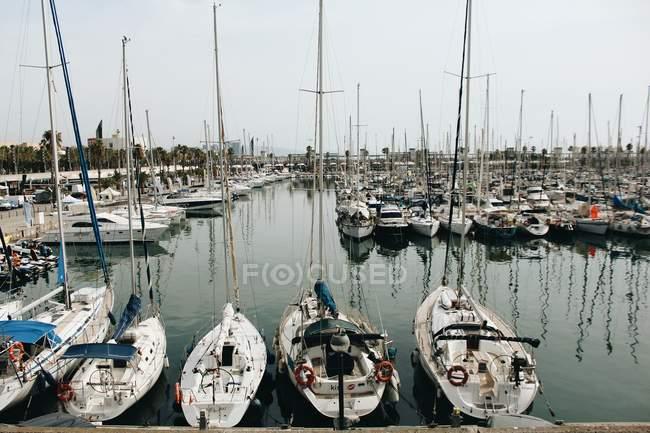 Rows of moored yachts at harbor — Stock Photo