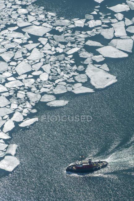 Пташиного польоту крижин та плавання суден на поверхні води — стокове фото
