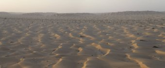 View of sand dunes in desert, Oman — Stock Photo