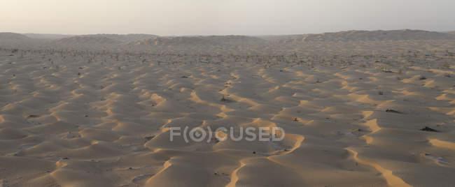 Vue sur les dunes de sable dans le désert, Oman — Photo de stock