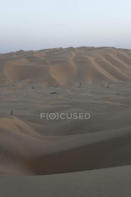 Désert de dunes dans le quartier de vide, Oman — Photo de stock