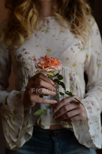 Cropped view of woman holding rose in hands — Stock Photo