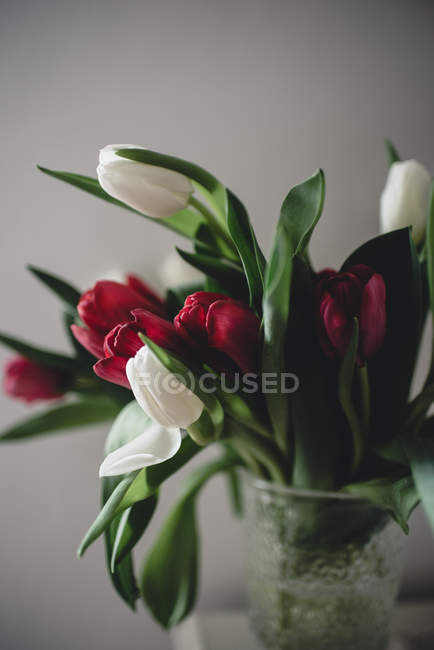 Close-up of bunch of tulips in vase — Stock Photo