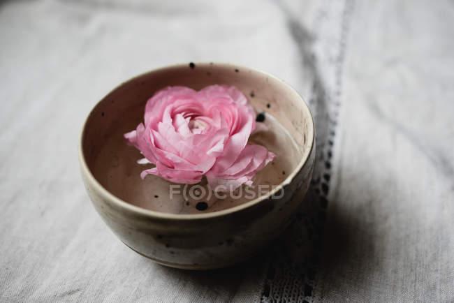 Рожевий бутон троянди плавають у керамічну миску на стіл — стокове фото