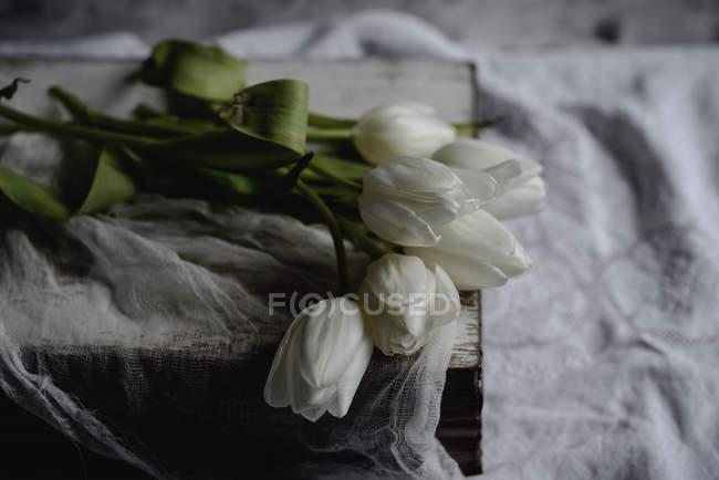 Bouquet de tulipes blanches sur livre vintage, gros plan — Photo de stock