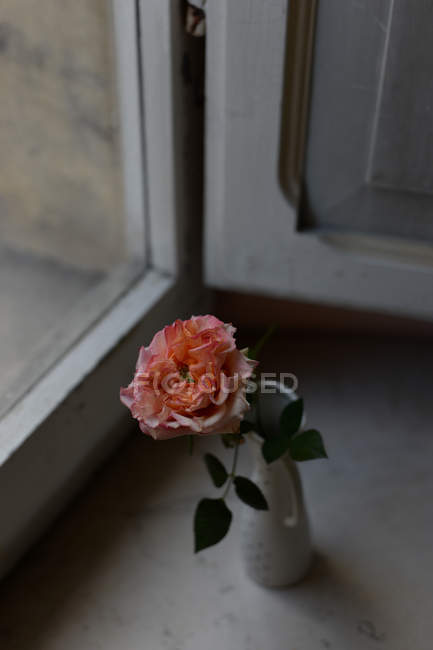 Pink rose in vintage vase on window sill, close-up — Stock Photo