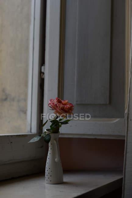 Pink rose in vintage porcelain vase on window sill — Stock Photo