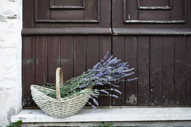Lavender plants in wicker basket on porch — Stock Photo