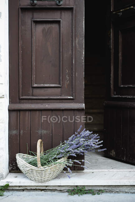 Lavender plants in wicker basket on porch in front of open shabby door — Stock Photo