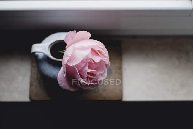 Rosa rosa em vaso vintage na soleira da janela, close-up — Fotografia de Stock