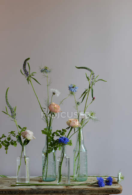 Floral arrangement with various plants in glass vases — Stock Photo