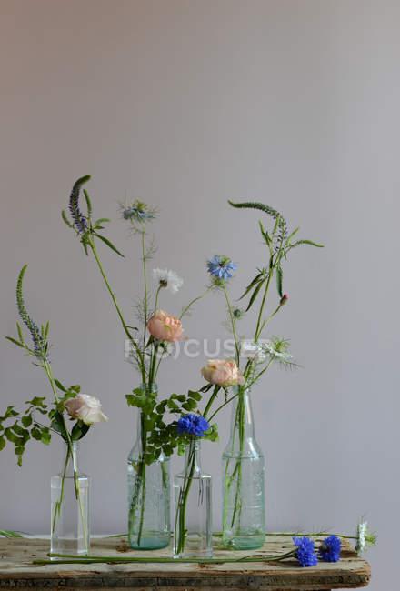 Disposizione floreale con varie piante in vasi di vetro — Foto stock
