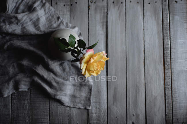Yellow rose in porcelain vase, top view — Stock Photo