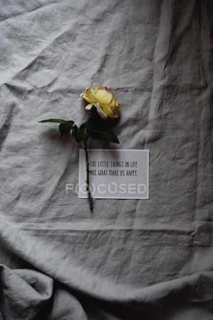 Rose jaune avec carte sur nappe lin gris — Photo de stock