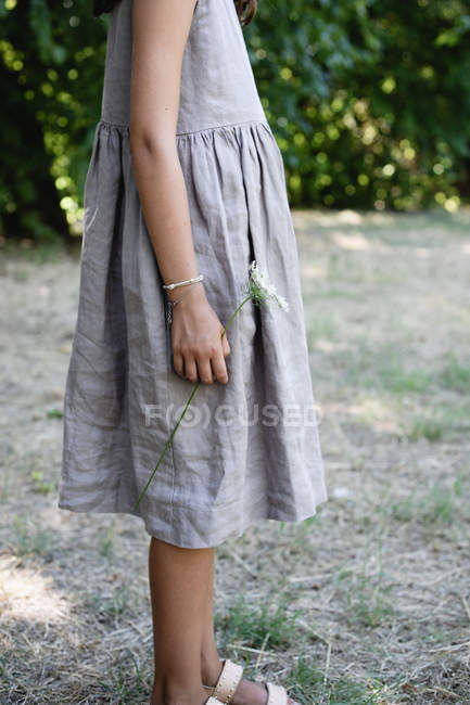 Cropped view of teen girl in gray dress with umbel wild carrot flower — Stock Photo