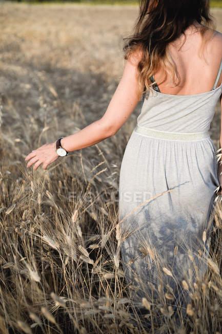 Вид сзади на женщину в платье, идущую по пшеничному полю . — стоковое фото