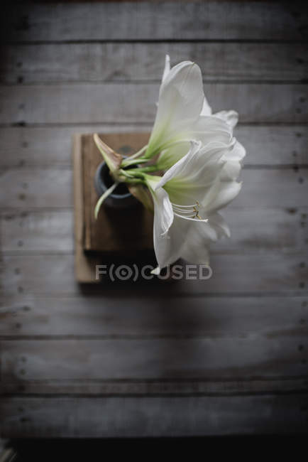 White lily flowers in vase on book pile on wooden background — Stock Photo