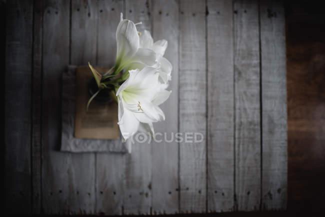 Fleurs de lys blanc dans un vase sur feuille de livre sur fond en bois — Photo de stock