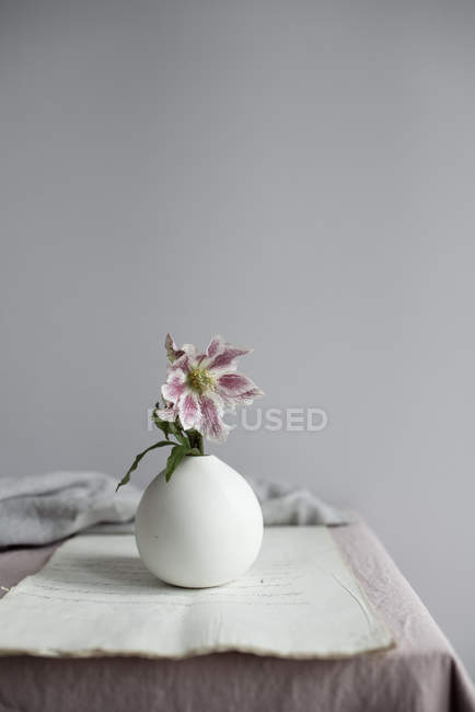 Pink lily flower in vase on table — Stock Photo