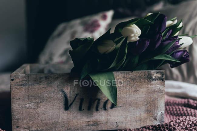 Белые и фиолетовые тюльпаны в винтажном деревянном ящике — стоковое фото