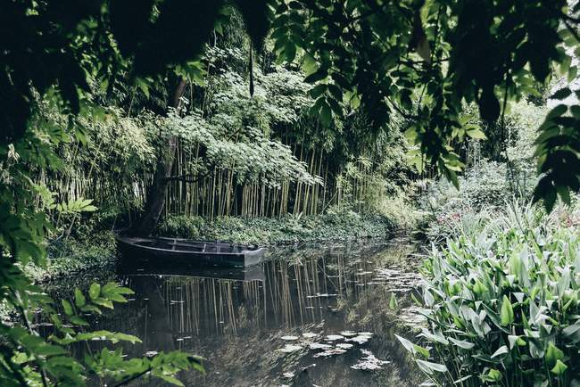 Outdoor scene with wooden boat moored in forest pond — Stock Photo