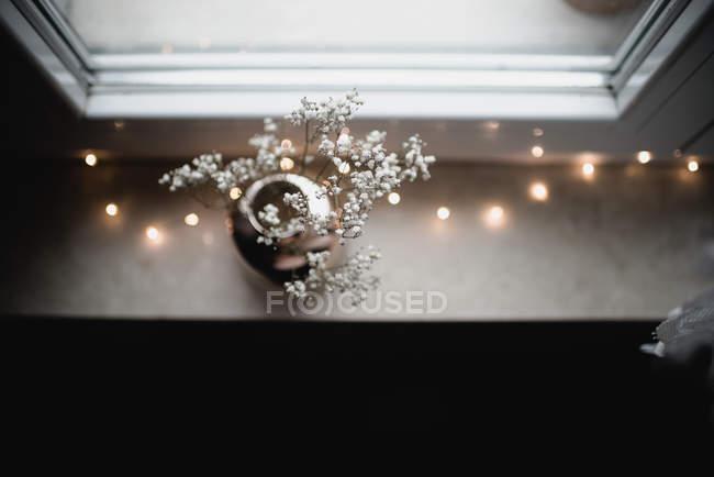 Филиалы с крошечные белые цветы на подоконнике с гирляндой — стоковое фото