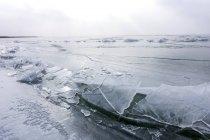 Озеро Нойзидлерзее в зимнее время, в Европе крупнейший естественный каток, Бургенланд, Австрия — стоковое фото