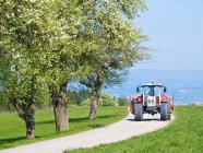 Peer trees in bloom against road with moving tractor — Stock Photo