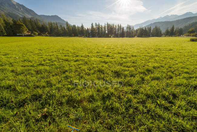 Vallée de Ramsau à Ramsau Dachstein, Styrie, Autriche, — Photo de stock