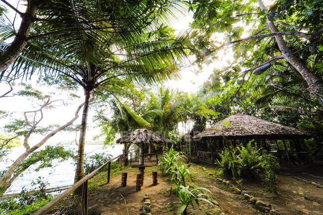 Небольших сельских зданий и хижин под деревьями, Куба, Гуантанамо, Баракоа — стоковое фото