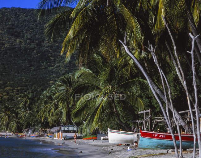 Spiaggia di sabbia con palme e barche — Foto stock