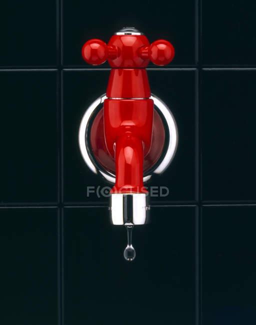 Roter Hahn auf Balck Hintergrund — Stockfoto