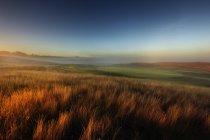 Vue panoramique sur les champs et le terrain de golf au coucher du soleil — Photo de stock