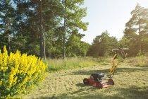 Tondeuse à gazon sur la pelouse en plein soleil avec des arbres sur le fond — Photo de stock