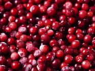 Close up shot of frozen cranberries — Stock Photo