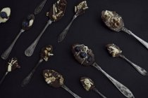 Dessert spoons with chocolate and blueberries — Stock Photo