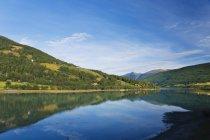 Maderas río y verde bajo el cielo azul - foto de stock