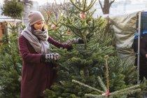 Donna che sceglie l'albero di Natale, concentrarsi sul primo piano — Foto stock