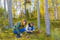 Duas mulheres pegando cogumelos na floresta — Fotografia de Stock
