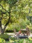 Tavolo e sedie in legno vuoti sotto l'albero — Foto stock