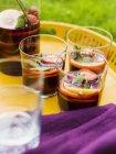 Окуляри з напоїв sangria на лоток — стокове фото