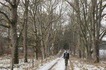 Rear view of man walking down snowy path — Stock Photo