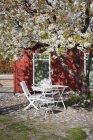 White table and chairs under cherry tree — Stock Photo